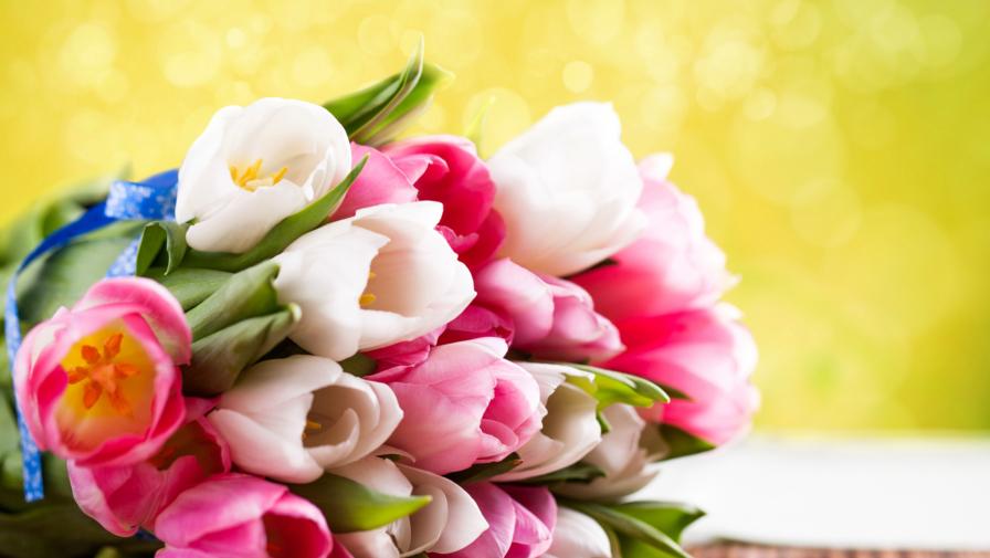 Поздравляем всех дам с 8 марта!